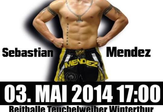 Art of Fighters Winterthur 2014-05-03